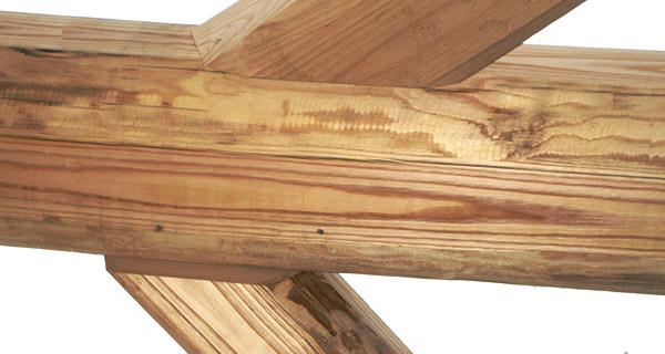 Azienda case in legno e case passive tetti in legno for Case in legno passive